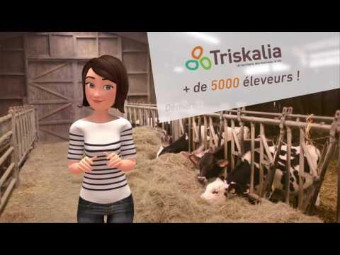 Studio d'animation Français