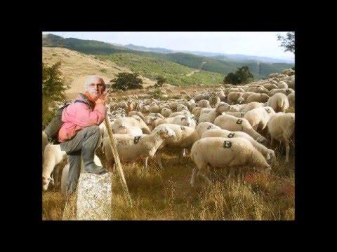 El Tamborilero - Raphael | Teaching Videos | Spanish songs ...