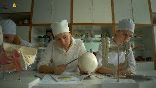Українські реформи   Медсестринство
