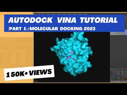Molecular Docking Tutorial: AUTODOCK VINA - PART 1