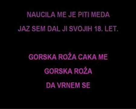 Karaoke - Andrej Šifrer - Gorska Roža
