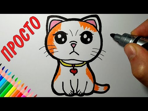 How to draw a CAT, just draw