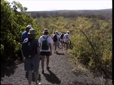 Adventures in the Galapagos Islands