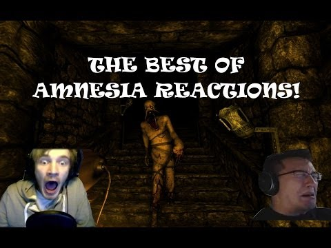 The BEST of: Amnesia - Reactions! (Funny)