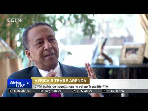 INTERVIEW: The progress towards a continental free trade area
