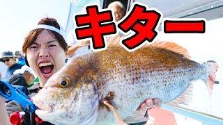 【釣り】巨大魚がキター!大きい鯛を釣ってやるぞー!