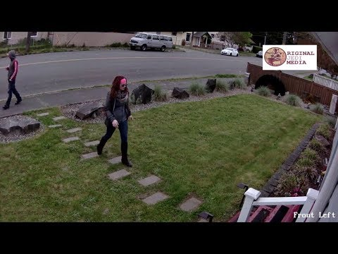 Christie James - 5 Things To Do If A Package Thief Strike