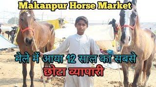 Makanpur horse market 2019-मेले में आया 12 साल का सबसे छोटा व्यापारी घोड़ा बेचने