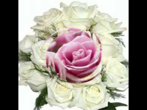 любимой фото цветы