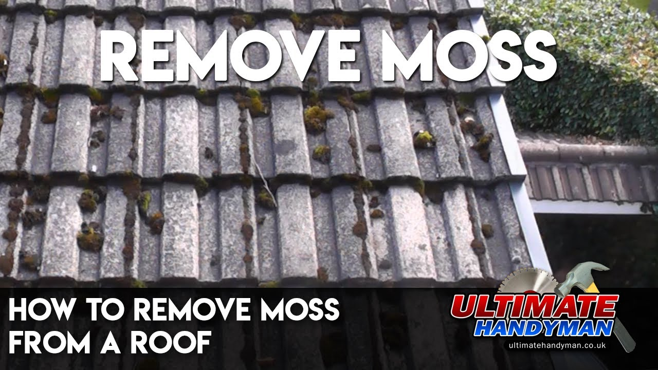 How To Remove Moss From A Roof Youtube