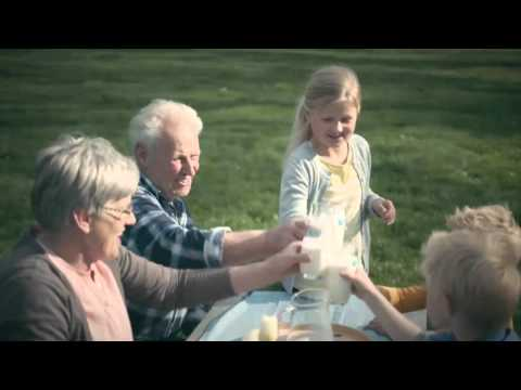 Cô Gái Hà Lan | 100% sữa tươi – 100% thơm ngon