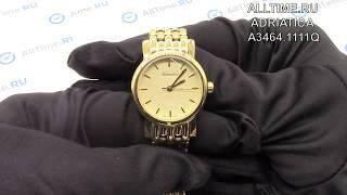 Обзор. Женские наручные часы Adriatica A3464.1111Q
