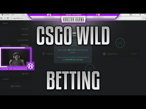 THE ROLLER COASTER OF LIFE (CSGO WILD BETTING)