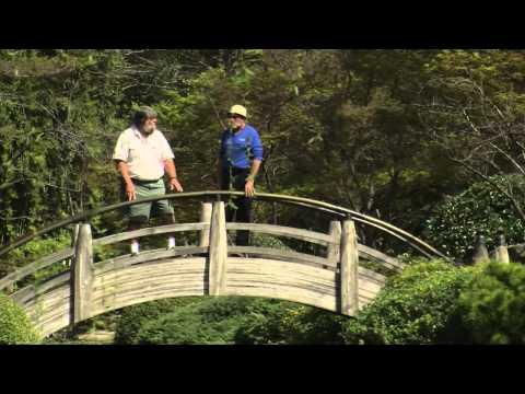 Ft. Worth Japanese Garden
