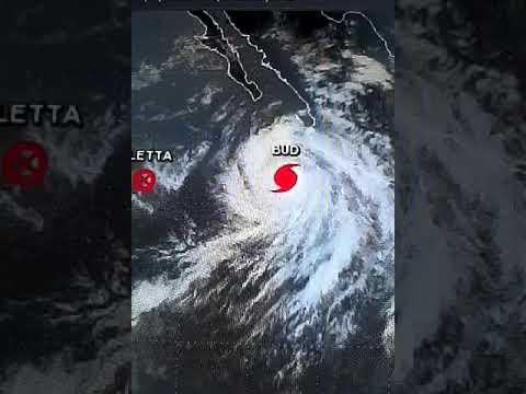 Major Hurricane Bud updates | New disturbance in the Caribbean | Post Cyclone Aletta