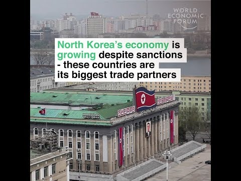 North Korea's economy is growing despite sanctions   these countries are its biggest trade partners