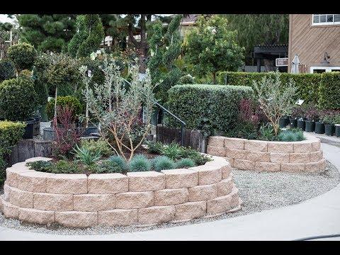 The California Friendly Garden