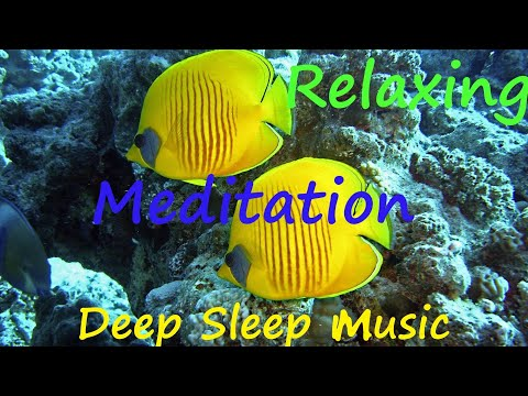 Deep Sleep Meditation Music With Under Water World .Relaxation For Stress Relief
