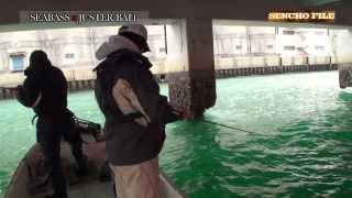 Repeat youtube video 冬でも絶好調、三河湾ボートシーバス