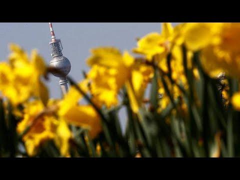 euronews (deutsch): 18,6 Milliarden jährlich: Gartentrend schafft Riesenmarkt