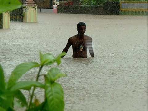 Kerala rain : 33 dams opened, Red alert in 12 districts