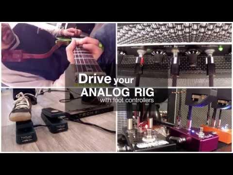 Rig Master & Rivera Amp + Suhr Riot Distorsion