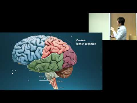 Dr. Octavio Choi presents Brain Basics: An Introduction to C