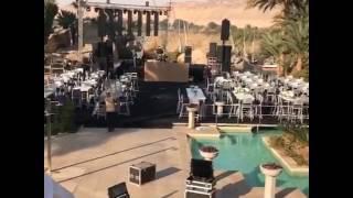 بالصور والفيديو| تفاصيل حفل زفاف عمرو وكندة.. زفة «نازلي» وديكور مفتوح