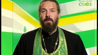 видео: 14 августа. Священномученик Димитрий Павский