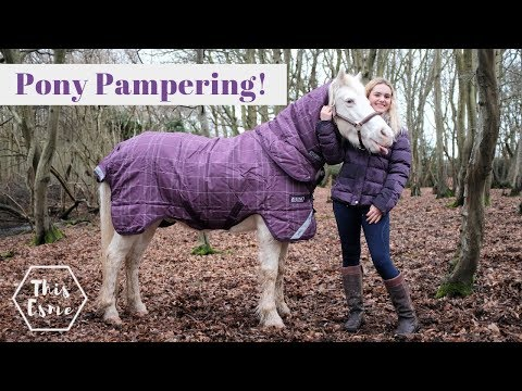 Mickey gets a Pony Pamper + Makeover Transformation | Satisfying Cleaning and New Rug! | This Esme