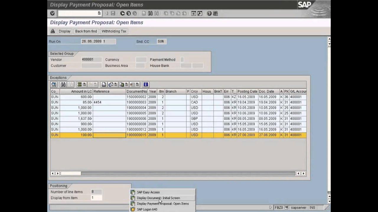 SAP Automatic Payment Run Execution Part 2