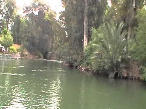 кормление сомов с рук на реке иордан смотреть в хорошем качестве