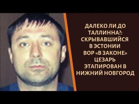 Скрывавшийся в Эстонии вор «в законе» Цезарь этапирован в Нижний Новгород