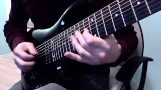 Animals As Leaders - An Infinite Regression Guitar Cover