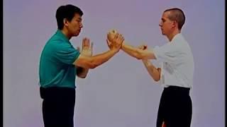 Slapping Hand Drills 1 - Pak Sau 1