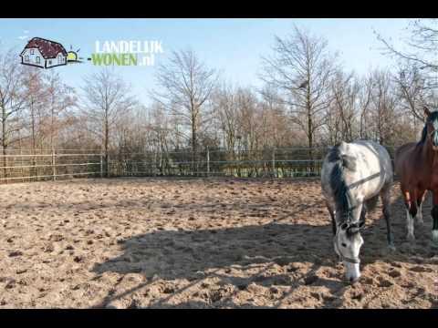 AgriTeam Makelaars Noord-Holland heeft te koop in OUDE NIEDORP een paardenhouderij