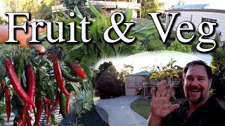 Fast Walk Around Fruit Vegetable Gardens