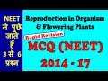 NEET MCQ ON REPRODUCTION IN ORGANISM AND SEXUAL REPRODUCTION IN FLOWERING PLANTS 2014 TO 17