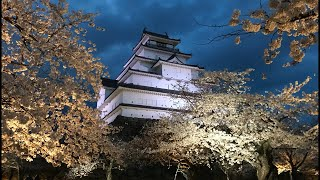 日本一周女ひとり旅268日目。福島県会津若松市の鶴ヶ城で夜桜Live