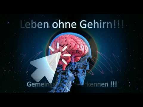 Leben - Menschen ohne Gehirn!? Wie ist es zu erklären!!!