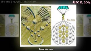 Crop circle mysteries - Best of 2014