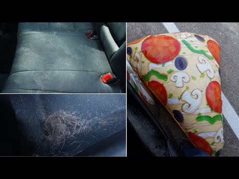 Deep Cleaning Car Interior -  Floor mats, Leather, Pet Hair, and More!