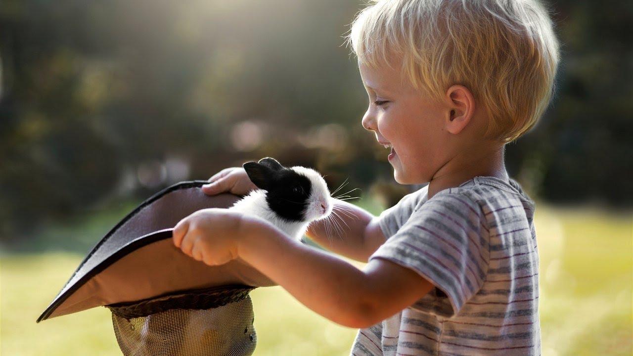 картинки воспитание доброты вместе