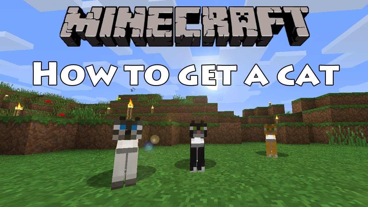 Minecraft how to get a cat youtube for How to build a cat
