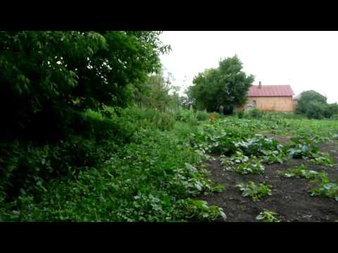 Дом в Тамбовской области на OLX