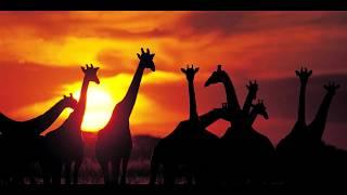 Toto - Africa - DJ OzYBoY 2k17 Deep Diezeo Rework