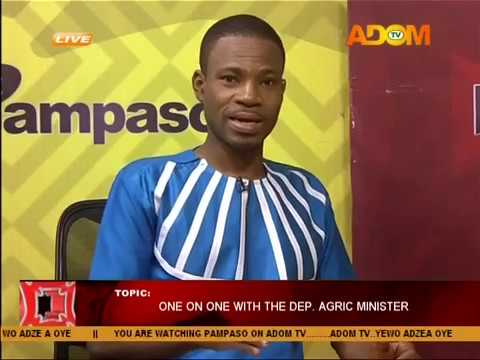 One on One with the Dep. Agric Minister - Pampaso on Adom TV (22-8-17)