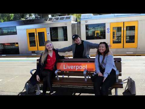 LING219 - Language Shift and Multilingualism in Sydney