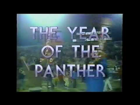 Year of The Panther