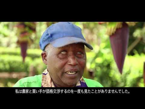 Sucastainability Kenya Focus Small Estate - Japanese subtitles